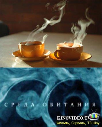Чай и кофе.  Что мы знаем о напитках, которые пьем так часто.